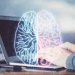 Microsoft-Studie zu künstlicher Intelligenz: Erfolgreiche Unternehmen gewichten Technologie und Qualifizierung gleich